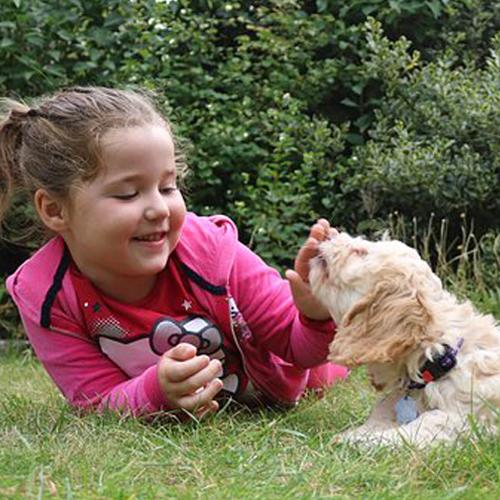 Bambini e animali: i benefici per lo sviluppo psicofisico